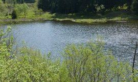 Mơ thấy ao hồ là điềm lành hay điềm dữ, đánh con lô đề gì trúng?